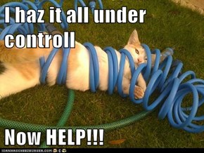 I haz it all under controll  Now HELP!!!