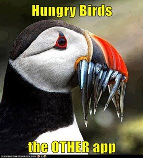 Hungry Birds  the OTHER app