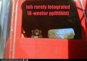 teh rarely fotografed  18-weeler ppfftthhtt