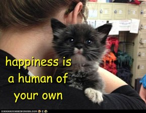 happiness is  a human of  your own