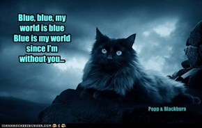 Blue, blue, my world is blue Blue is my world since I'm without you...