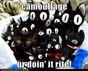 camouflage  ur doin' it rite!