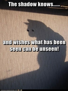 The shadow knows...... and wishes what has been seen can be unseen!