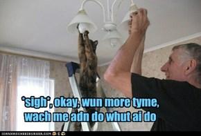 LOLcat to teh reskyoo
