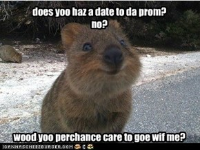 does yoo haz a date to da prom? no?         wood yoo perchance care to goe wif me?
