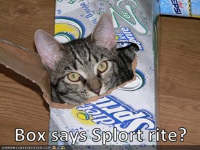 Box says Splort rite?
