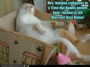 Mrs. Nonono collapses in a Time Out Bawks before bein' rushed to teh Discreet Rest Home!