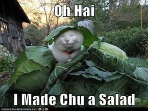 Oh Hai  I Made Chu a Salad