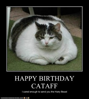 HAPPY BIRTHDAY CATAFF