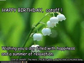 HAPPY BIRTHDAY,  cataff !