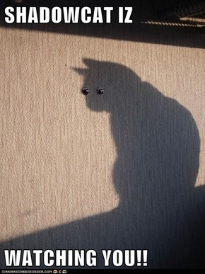 SHADOWCAT IZ  WATCHING YOU!!