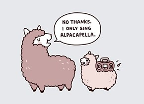 Alpacapella