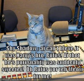 Shy Shadow : ai can't bleve it was Harry's bro, Rufus! Ai thot he's purrsnality was suddenly sweeter!  Oh Rufus yor teh Meow fur me!