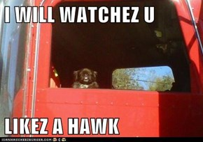 I WILL WATCHEZ U  LIKEZ A HAWK
