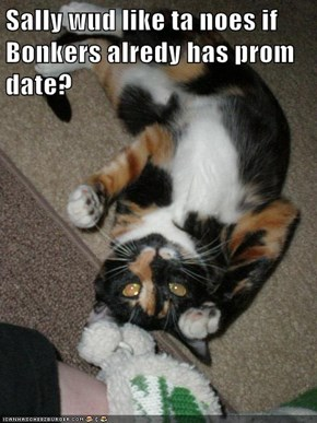 Sally wud like ta noes if Bonkers alredy has prom date?
