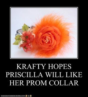 KRAFTY HOPES PRISCILLA WILL LIKE HER PROM COLLAR