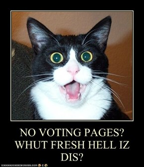 NO VOTING PAGES? WHUT FRESH HELL IZ DIS?