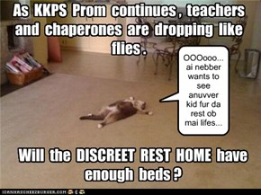 KKPS Prom is having its usual effect on adults!
