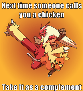 Who wouldn't want to be a Blaziken