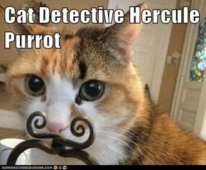 Cat Detective Hercule Purrot