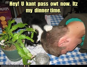 Hey!  U  kant  pass  owt  now.  Itz  my  dinner time.