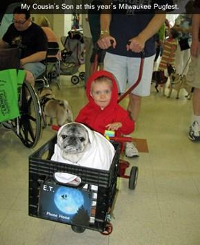 extraterrestrial pug