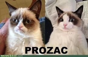 Grumpy? Grab a Prozac!