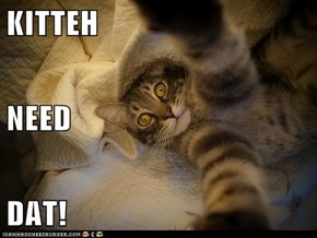 KITTEH NEED DAT!