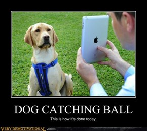 DOG CATCHING BALL