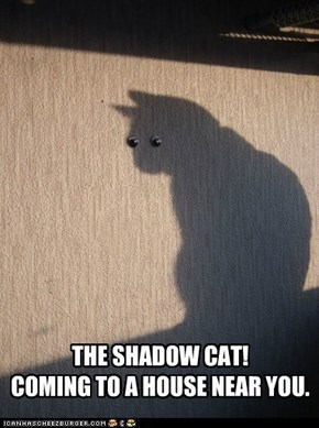 THE SHADOW CAT! COMING TO A HOUSE NEAR YOU.