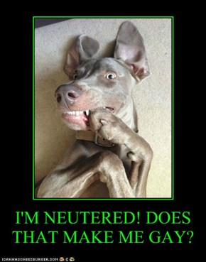 I'M NEUTERED! DOES THAT MAKE ME GAY?