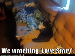We watching 'Love Story'.