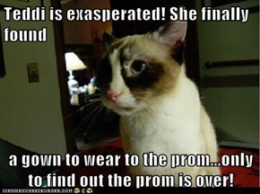 Teddi is exasperated! She finally found   a gown to wear to the prom...only to find out the prom is over!