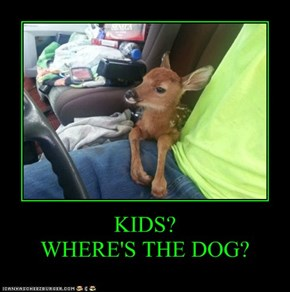 KIDS? WHERE'S THE DOG?