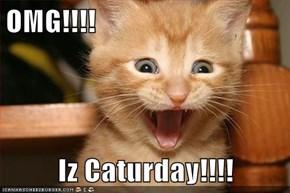 OMG!!!!  Iz Caturday!!!!