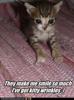 They make me smile so much I've got kitty wrinkles :)