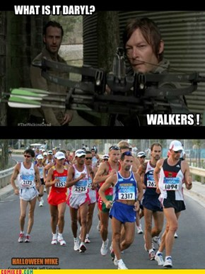 What is it Daryl? WALKERS!