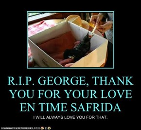 R.I.P. GEORGE, THANK YOU FOR YOUR LOVE EN TIME SAFRIDA