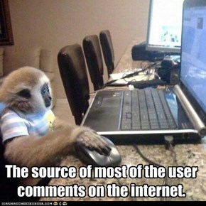 The source of most of the user comments on the internet.