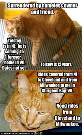 Tolstoy. Drivers / rides needed. Can anyone help or know someone?