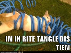 IM IN RITE TANGLE DIS TIEM