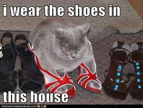 i wear the shoes in  this house
