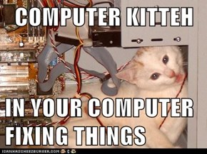 COMPUTER KITTEH  IN YOUR COMPUTER FIXING THINGS