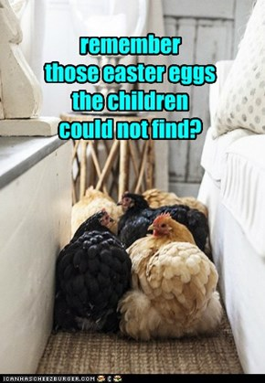 remember  those easter eggs the children could not find?