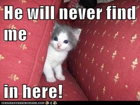 He will never find me  in here!