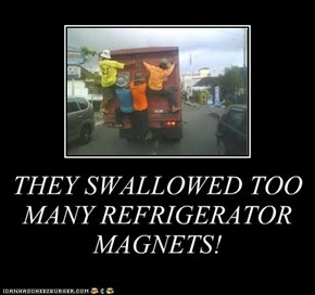 THEY SWALLOWED TOO MANY REFRIGERATOR MAGNETS!