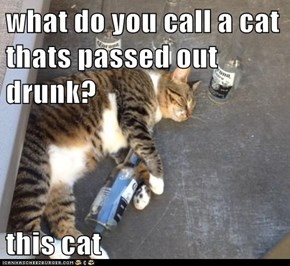 what do you call a cat thats passed out drunk?  this cat