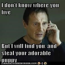 I don't know where you live  But I will find you, and steal your adorable puppy