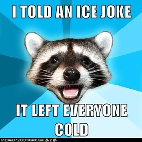 I TOLD AN ICE JOKE  IT LEFT EVERYONE COLD