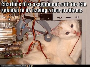 Charlie's first assignment with the CIA seemed to be having a few problems